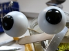 Augenproduktion